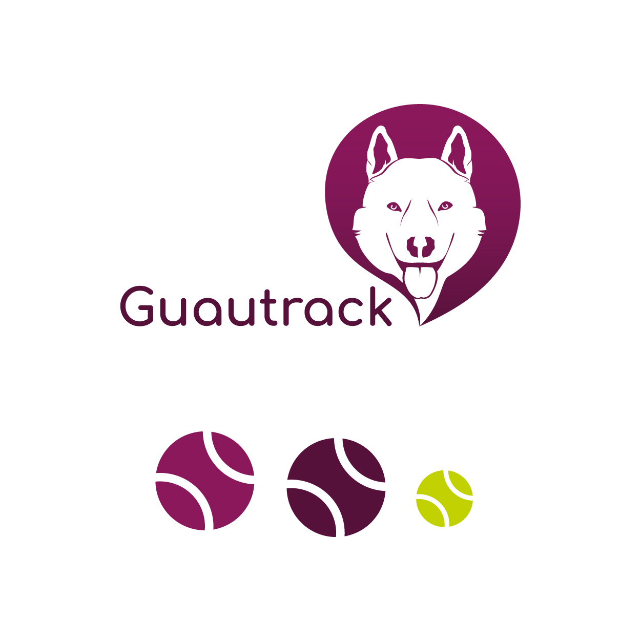 guautrack-30
